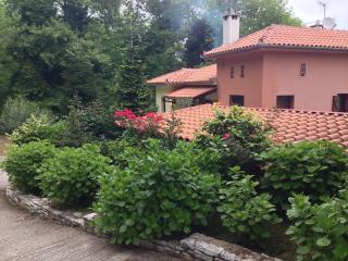 Ein traditionelles Haus in Pelion, Agios Ioannis