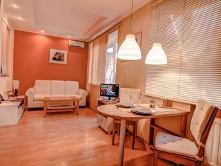 cozy apartment for guests, San Petersburgo