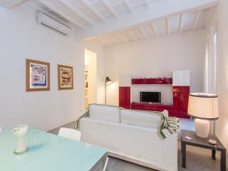 Governo Vecchio Luxury Modern Apartment