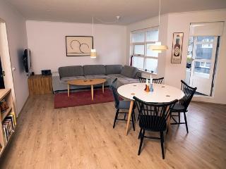Great Central Apartment, Reykjavik