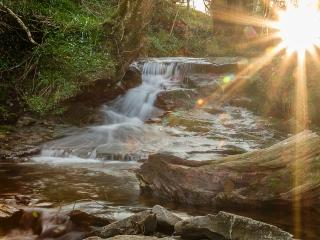 Swn Y Nant 'Sound of the Stream'