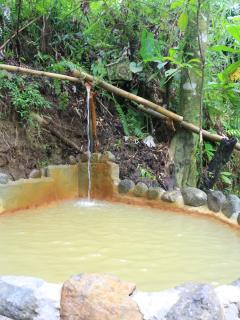 Tropical valley natural hot pool( volcanic mineral water)