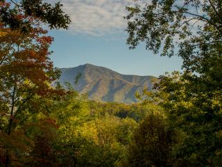 """Halfway to Heaven"" Mountain View, 5 BR Cabin, Arcade, Pool Table, Pool Access, Gatlinburg"