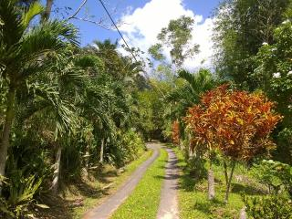 Havenridge Eco Place, a serene natural open space, St. Ann's