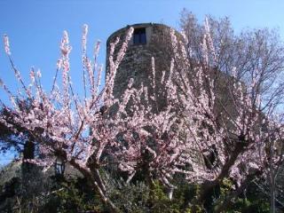 Torre di Colle del Marchese