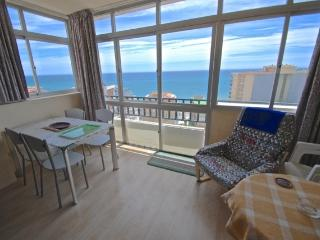 1bed apartment beachfornt, Fuengirola