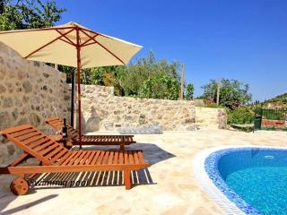 Dalmatian stone villa with pool, Mali Ston
