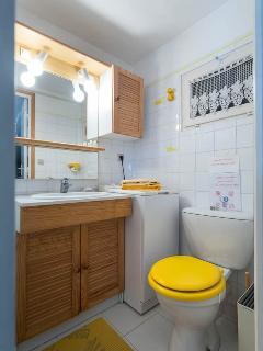 Un lavabo, w-c, des rangements, lave-linge dans la salle de bains