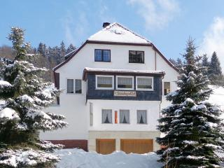 2-bedroom flat in Thuringia with mountain views, Jena