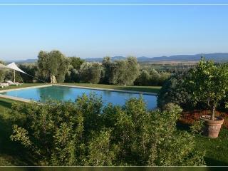 la pietraia piscina sauna orto mare 8 km 8 persone, Magliano in Toscana