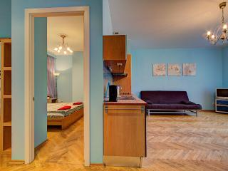 Deluxe one-bedroom flat on Nevsky (125)