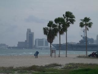 Corpus Christi Beach Condo 3140
