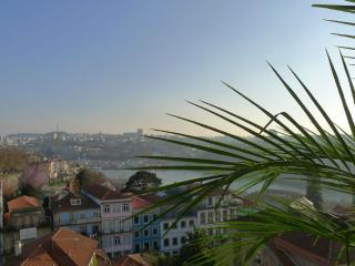 RE1- Superb 4Br apt, river view, elevator, AC, Porto