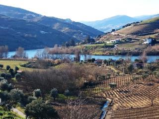 The Wine House in Douro   Casa da Adega do Chão