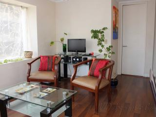 3 Bedroom apartment in downtown Santiago