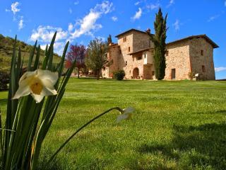 Villa in Castelnuovo Berardenga, Chianti, Tuscany, Italy, Pievasciata