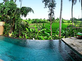 Privacy in Tropical Nature & Luxury... 6-BR Villa