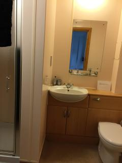 Highlander studio ensuite shower room