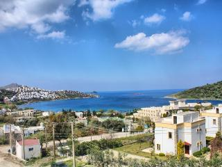 Sea View Villa Tunus in Bodrum