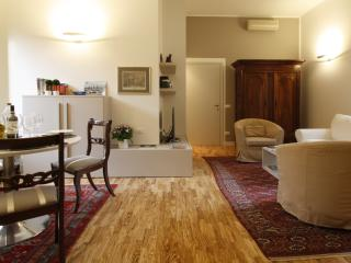 Brand New and Charming Apt in the center of Pavia
