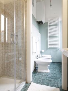 The mosaic bathroom with shower
