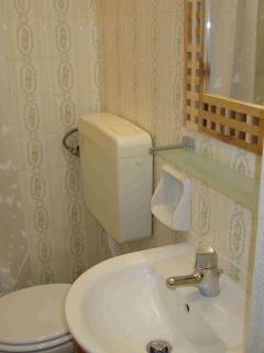 II nd bathroom with shower