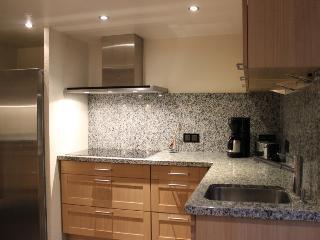 Küche - Linke Seite mit großen Induktionskochfeld und Spüle