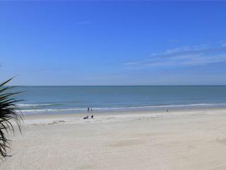 #301 The Shores Condo, Redington Shores