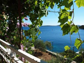 35896 A1(5+1) - Cove Ljubljeva (Vinisce), Sevid