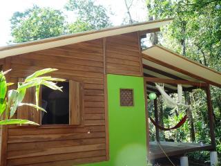 Casa Lina Eco Lodge exotic jungle apartment with sloth and iguana view