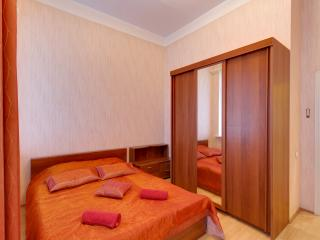 Spacious apartment on Moika embankment(355)