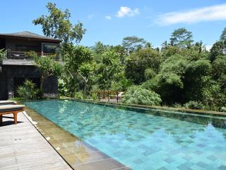 Bali River Retreat