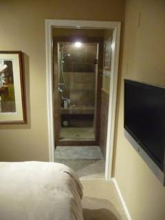 Master Bedroom TV & Ensuite Shower