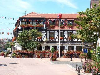 A cosy flat near Strasbourg, Mutzig