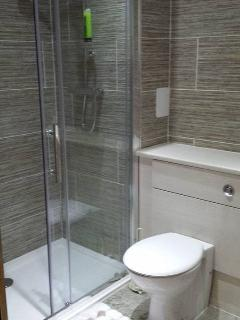 Beautiful en-suite shower room from master bedroom.