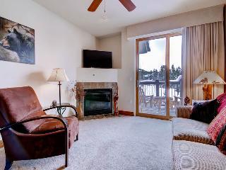 Appealingly Priced  1 Bedroom  - 1243-94789, Breckenridge