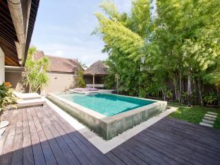 Exotic Villa Teko Seminyak