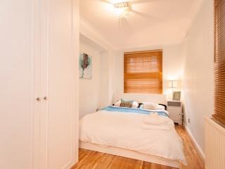 Lovely Central London 3 bed 3 bath Mews house