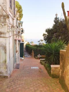 View from casetta belvedere