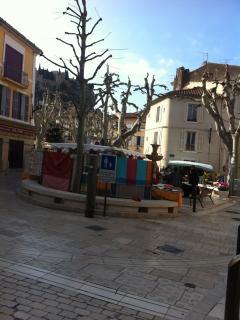 vue de la place de la fontaine marche provencal le mercredi et vendredi-  fountain circus provencal