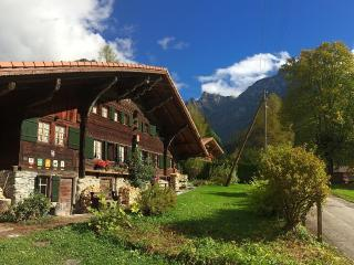 CHALET WITH CHARACTER AT GRYON VILLARS, Les Plans-sur-Bex