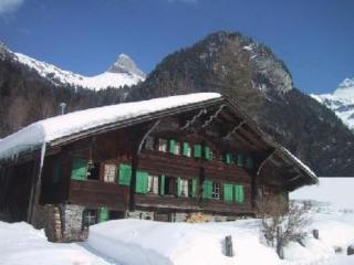 Historical chalet in the Swiss Alps near Gryon, Les Plans-sur-Bex