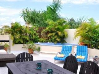 Playa Kaan #31 Penthouse close to beach and 5th av, Playa del Carmen