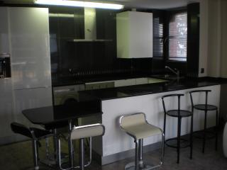 Comedor-Cocina americana diseñada en Blanco y negro.  Totalmente equipado.