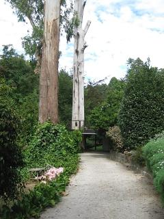 Driveway leading to Cloudland