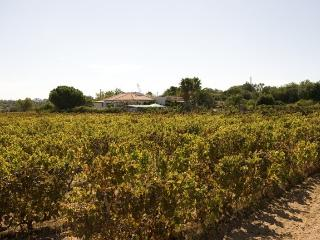 HOLIDAY VILLA NEAR CARVOEIRO FOR RENT, Carvoeira