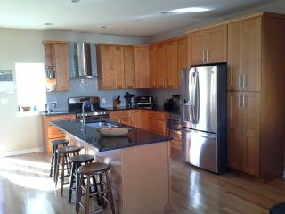 Spacious new 4 BR 3 BA w/ large roof deck, Philadelphia