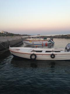 Local's boats