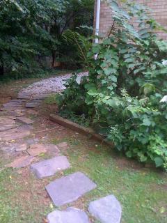 Back yard pathway