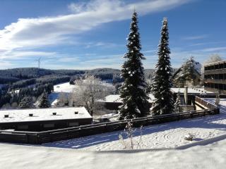 Vacation Apartment in Schonach im Schwarzwald - 893 sqft, 1 living room / bedroom, max. 5 people (#…